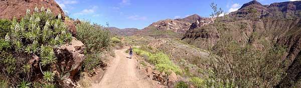 Gran Canaria, Berge bei Ayagaures