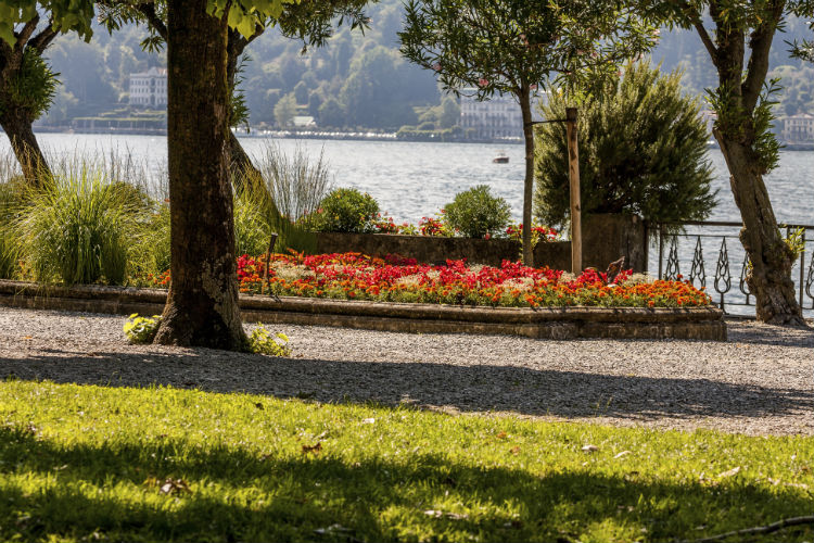 Park am Comersee