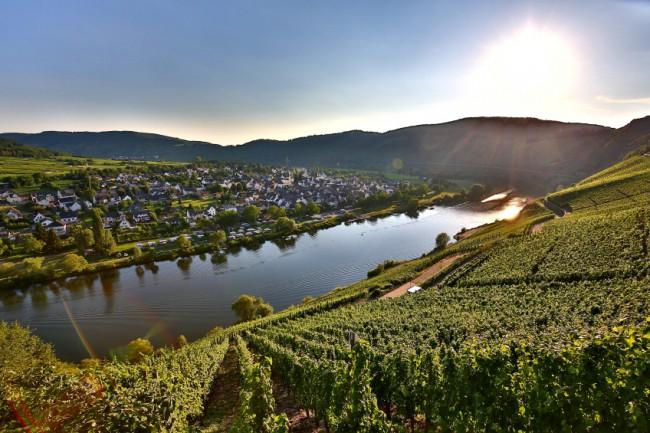 Genießerurlaub für Weinkenner an der Mosel