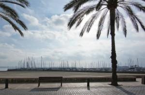 Arbeiten und Leben wo andere Urlaub machen – auf nach Mallorca